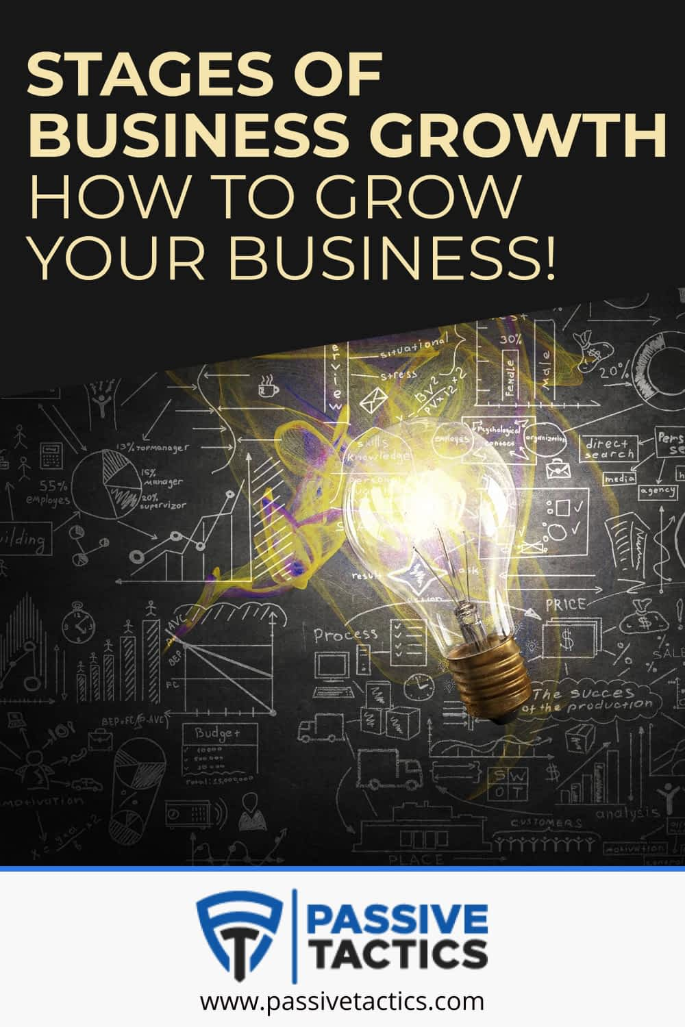 Stages of Business Growth: How To Grow Your Business!